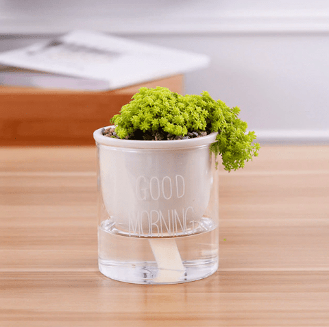 Automatic Watering Planter Pots