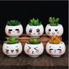 Image of Cute Expressions Succulent Plant Pots