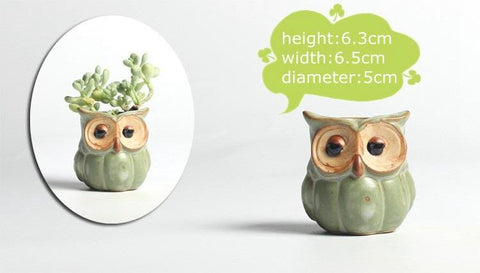 Cute Owl Shape Plant Flower Pot (Set of 5)