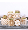 Image of Ceramic Porcelain Succulents Planter