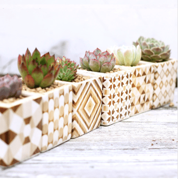 Ceramic Porcelain Succulents Planter