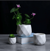 Image of Small Ceramic Flower Vase Succulent Cactus Pot