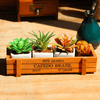 Image of Succulent Storage Wooden Box
