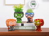 Image of The Avengers Plant Pots