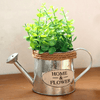 Image of Vintage Metal Succulent Watering Plant Pot