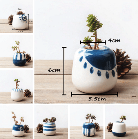 Mini Succulent Ceramic Pots (Set Of 8)
