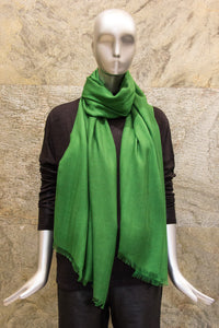 Elegant Solid Parrot Green Cashmere Silk Woven Shawl - Pashma Outlet