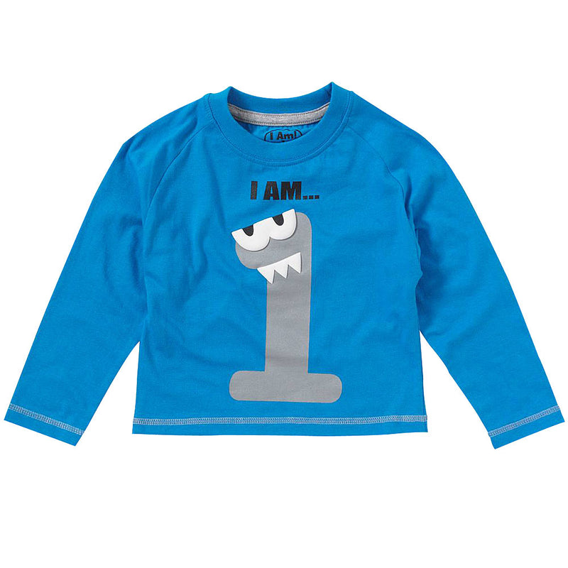 Boys I Am ... 1st Birthday Top