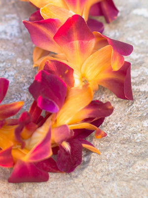 Dyed Orange Orchid Single Lei - locallei