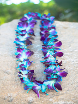 Dyed Blue Orchid Single Lei - locallei