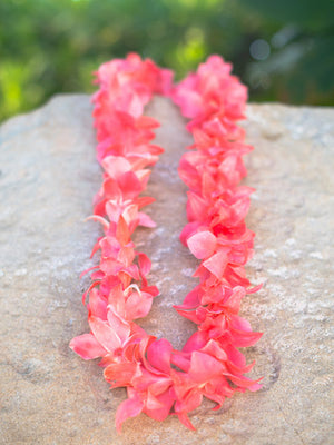 Dyed Pink On White Orchid Single Lei - locallei