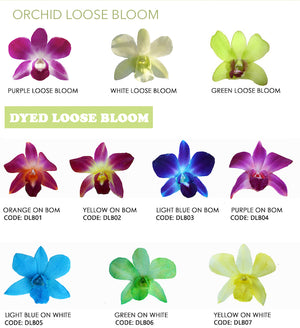 Orchid Loose Blooms - 100 Loose Blooms - locallei