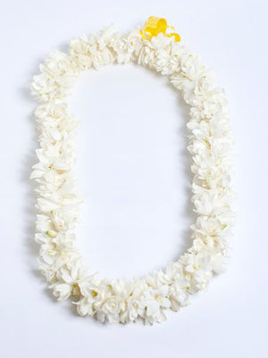Double Tuberose Leis (Fragrant) - locallei