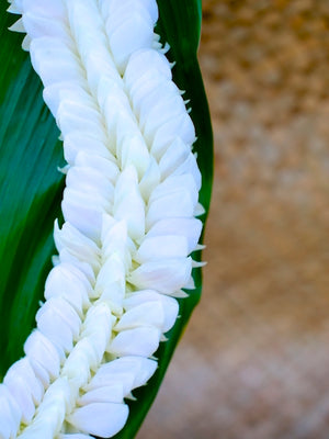 White Feather Lei - locallei