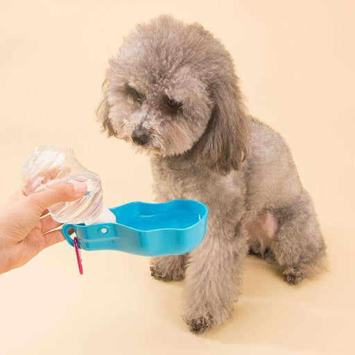 Pet outside waterer - Naughty Bubbles