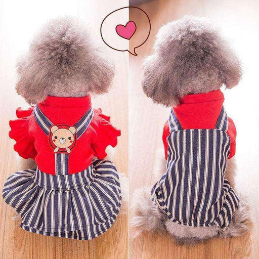 Couple pet dog suit with strip for Vanlentine's Day - Naughty Bubbles