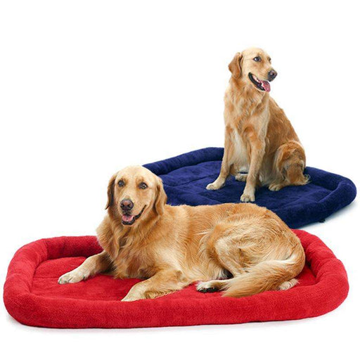 Big Dog Pet Soft Cushion - Naughty Bubbles