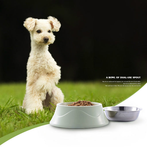 Double Layer Stainless Steel Dog Bowls - Naughty Bubbles