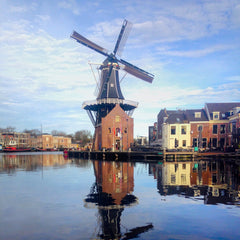 Best things to do in Haarlem Netherlands in autumn-winter 2018-2019.