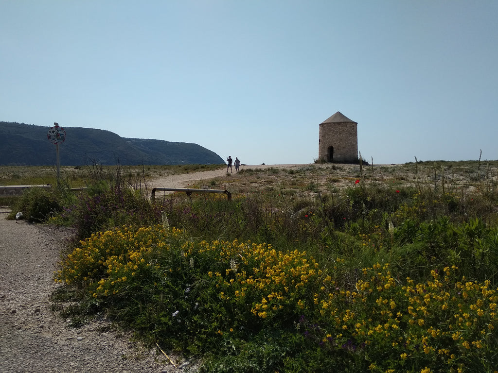 The windmill is one of the symbols of Greek islands, it has appeared in In Lefkada, the construction of the mills started later- in the Venetian Rule era. only 5 have remained at Gyra area and Agios Ioannis - Tripatricks