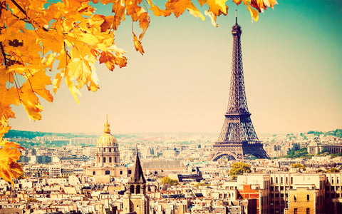 Fall in love with Paris