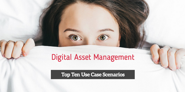 Top Ten DAM Vendors by Use Case Scenario