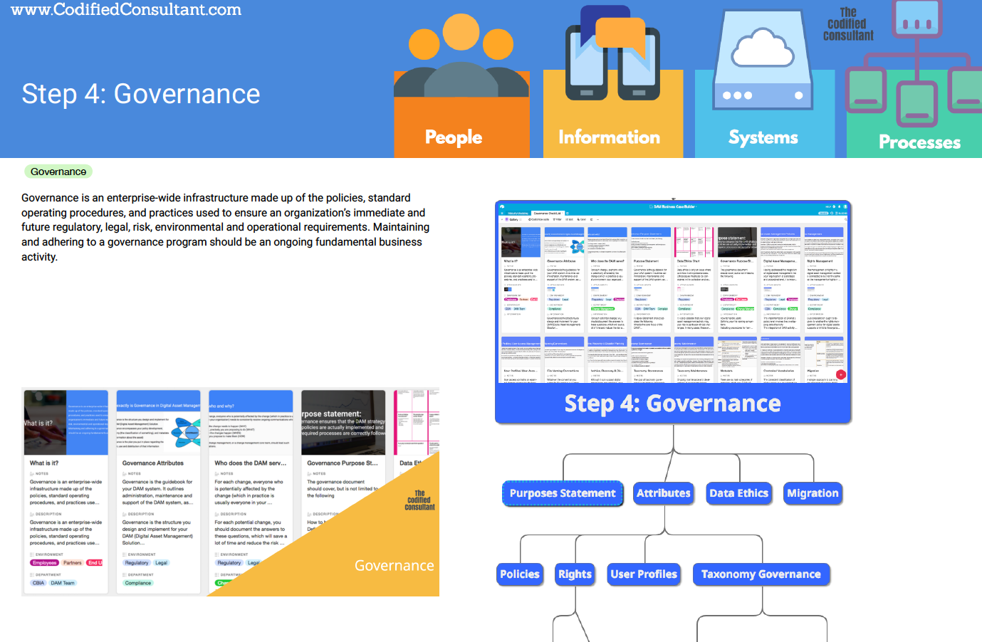Step 4: DAM Governance