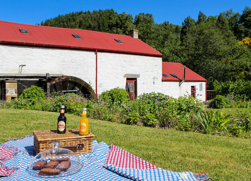 National Picnic Week: Top 5 Places to Enjoy a Picnic in Moray Speyside