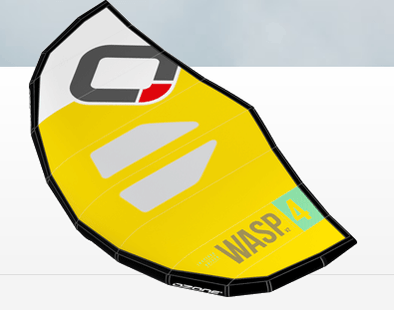 Ozone Wasp V2 Wing and Bag