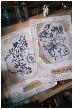 Flower Collage Stamp, Large Botanical Rubber Stamp, Distress Floral Label by Lin Chia Ning LCN Dried flower A