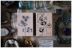 Dried Flower Collage Stamp Set, Vingtage Botanical Label Rubber Stamps by Lin Chia Ning - LCN Dried flower set C