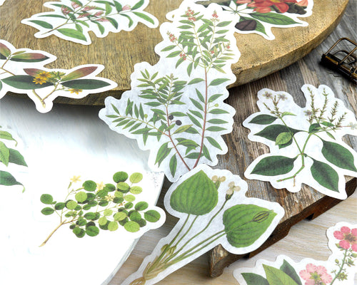 Large Leaf Washi Stickers 60 pcs, Junk Journal Ephemera, Botanical Plant Flower Stickers