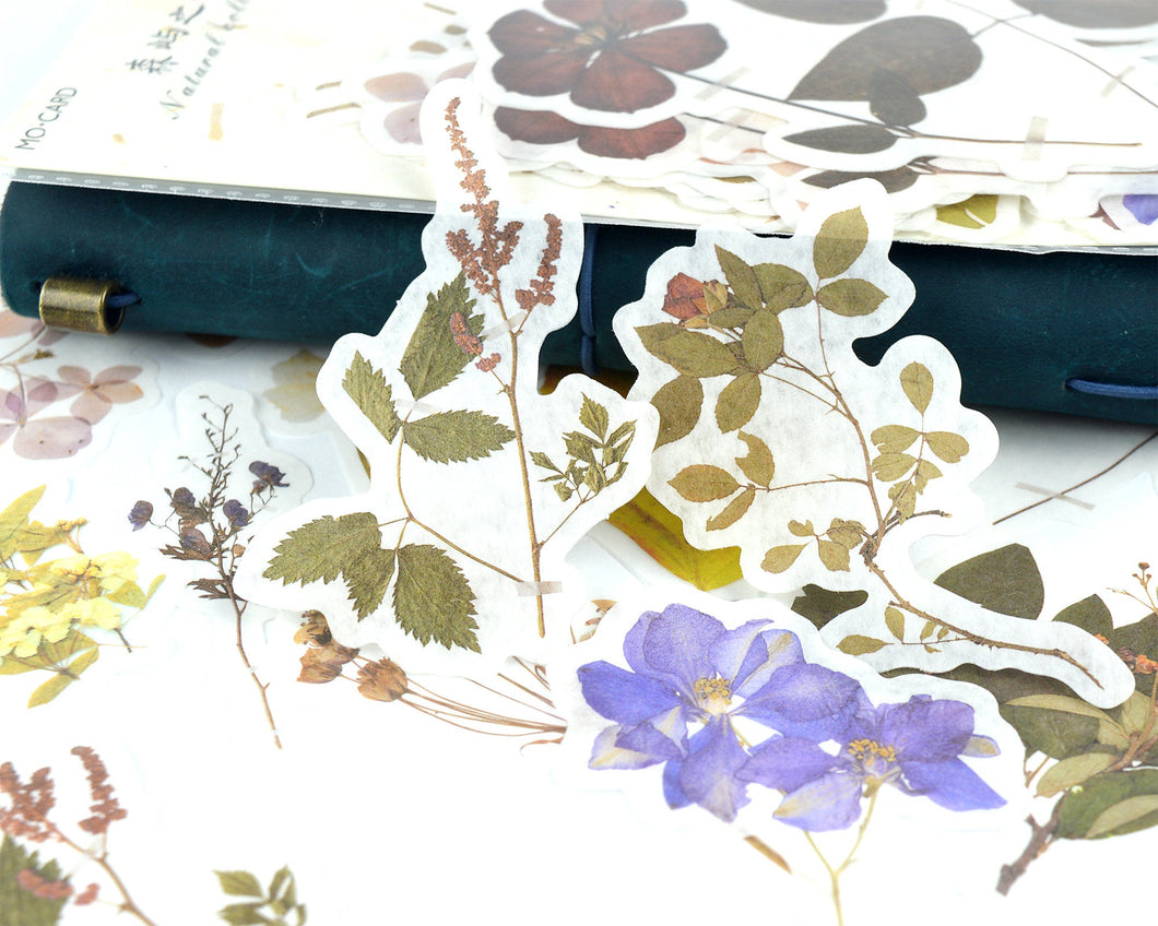 Pressed Flower Washi Stickers 60 pcs, Dried Floral Botanical Stickers