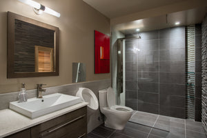 Basement bathroom with urinal, shower, and sauna