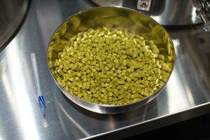 16 oz of hops blending up for our Electric Hop Stand Pale Ale