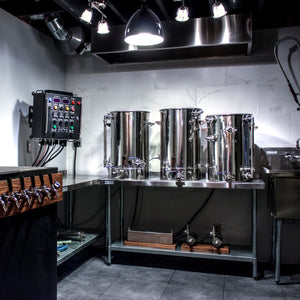 50A Electric Brewery Control Panel for 30+ gallons (DIY Kit, 240V only, for international use)