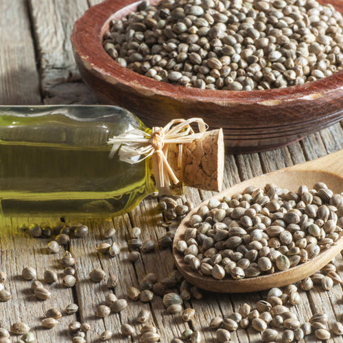 5 Skincare Health Benefits of Hempseed Oil