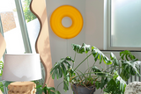 Orange Donut Lamp, 2020