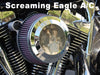 Twin Cam Air Cleaner Inserts on Screaming Eagle A/C