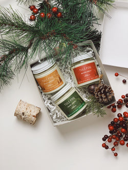 Holiday Travel Collection | Gift Set