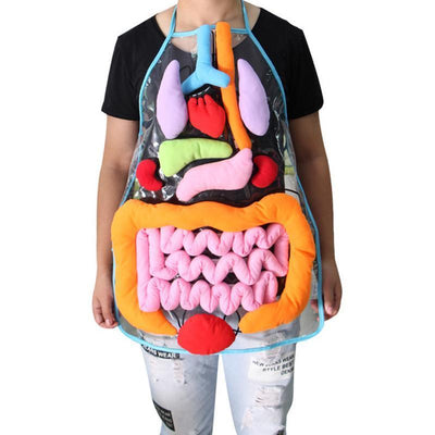 La Belle Sophie Body Anatomy Apron - An Educational Toy for Children