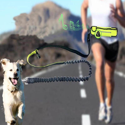 La Belle Sophie neoprene green / L Hands Free Dog Leash