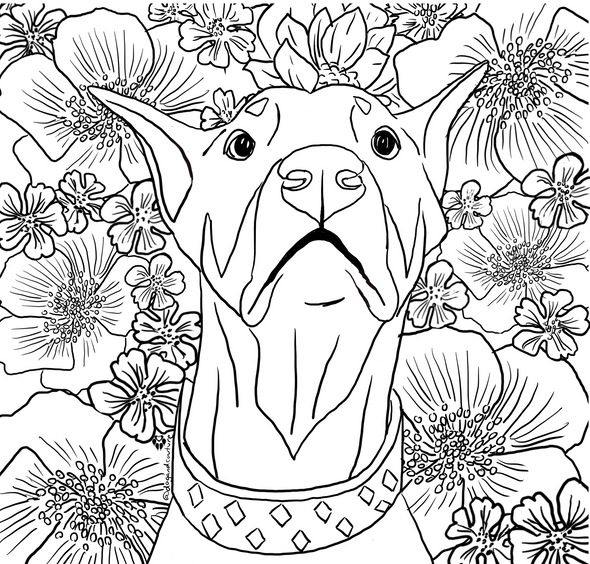 Sweetest Boy Colouring Page