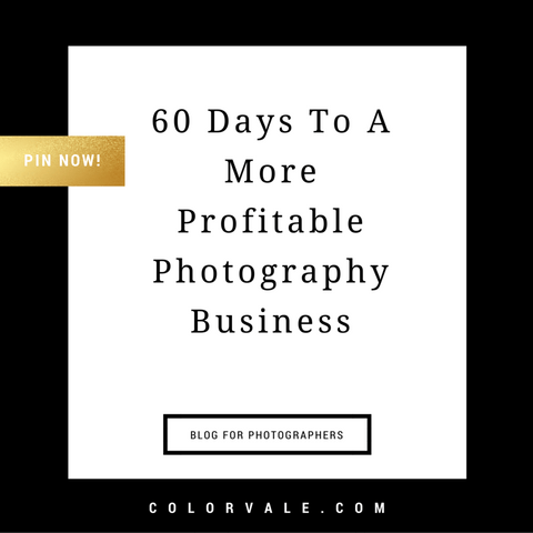 60 Days to a More Profitable Photography Biz