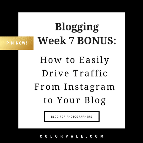 How To Easily Drive Traffic From Instagram To Your Blog