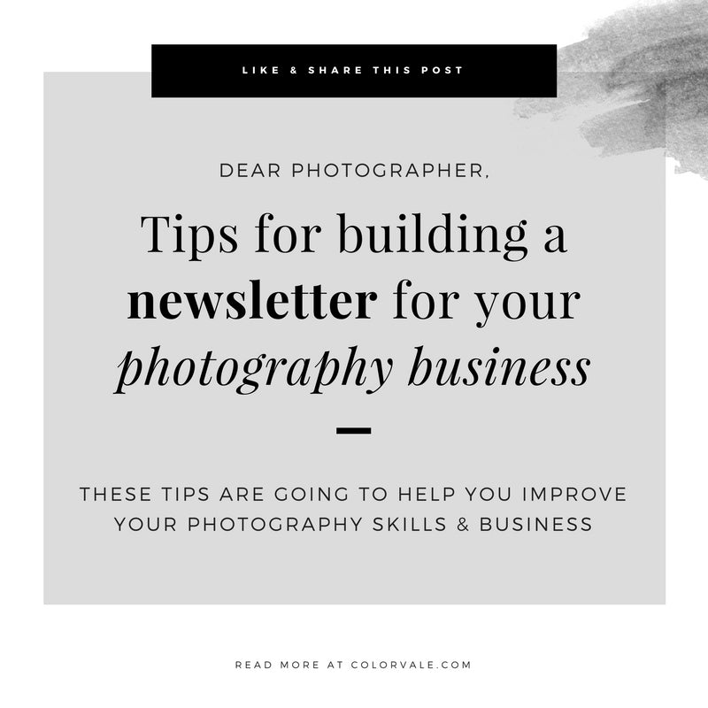 Tips for building a newsletter for your photography business & how it can really help you grow your business