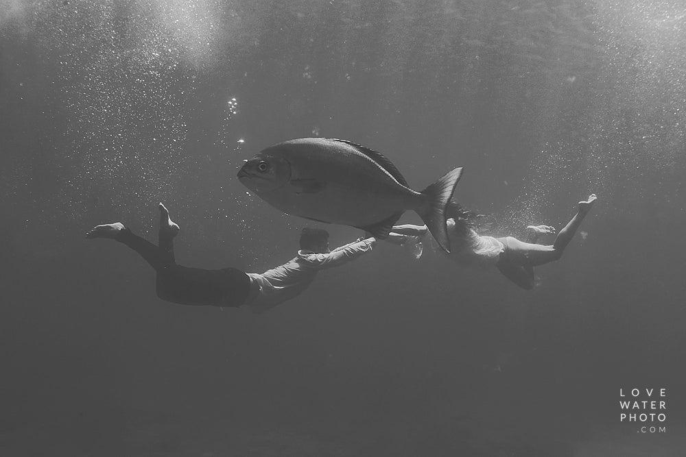 Editing underwater photography photos using Luxe Film Photoshop Actions