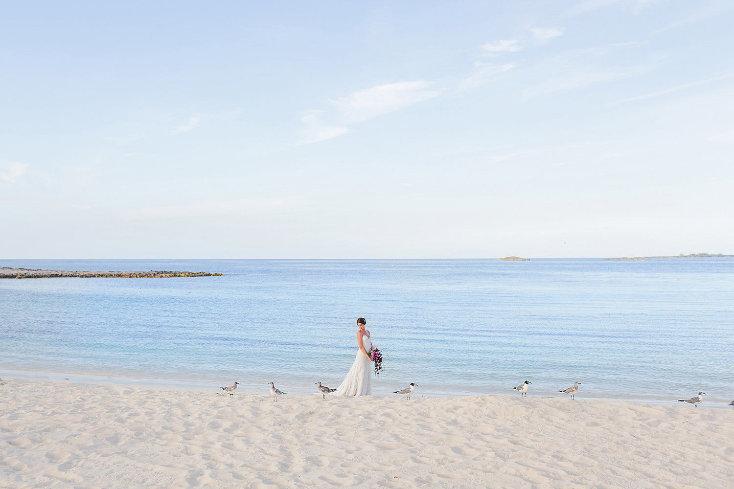 Wedding photography - travel, costs & quotes