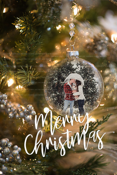 Ornament Template 2017 Vertical 3 - for photographers - Templates & Overlays