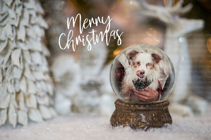 Snow Globe Template 2017 - 2 - for photographers - Templates & Overlays